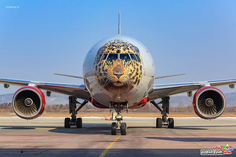 The most beautiful painted aircraft_artpico_ir-001